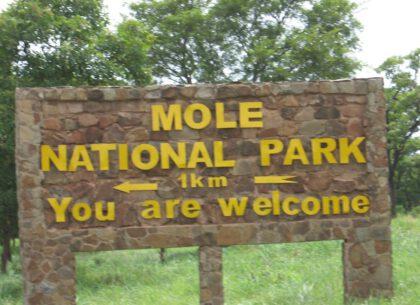Mole_Game_Park_En